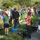 Otari's September Open Day